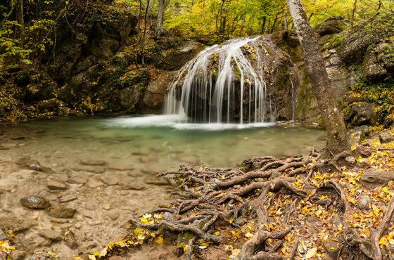 В осеннем лесу у реки